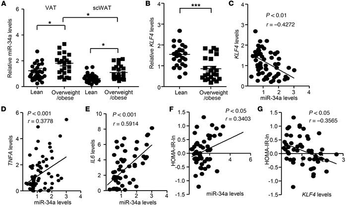 Dysregulated miR-34a/KLF4 axis in adipose tissues is associated with inf...