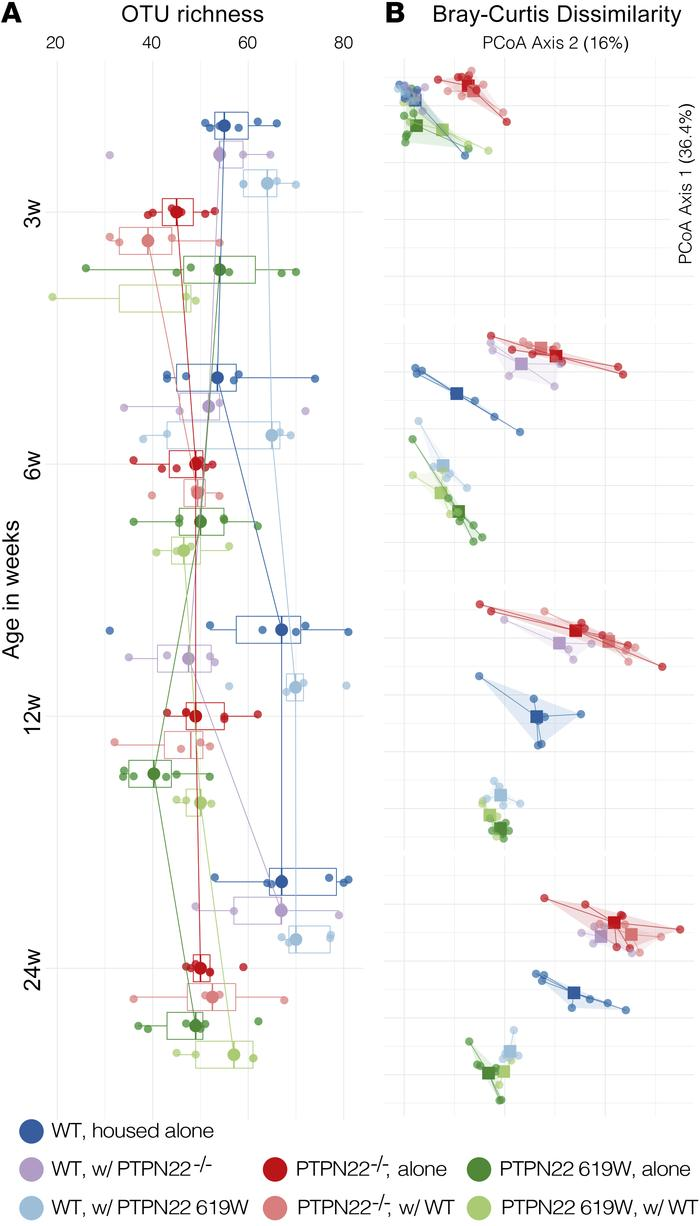 619W and PTPN22–/– genotypes are associated with a distinct gut microbio...
