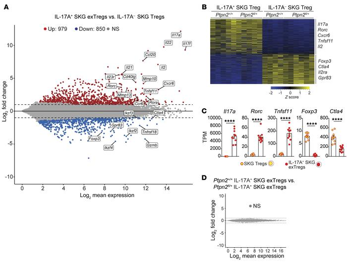 Transcriptomic comparison of in vivo isolated exTregs and Tregs. (A–D) R...