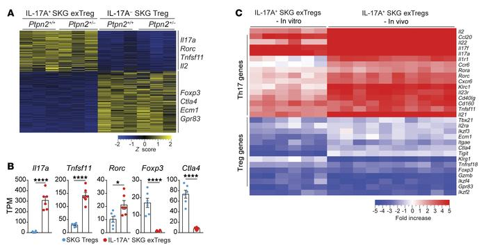In vitro–generated exTregs recapitulate in vivo exTregs. (A–C) RNA-Seq a...