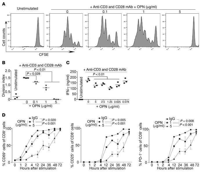 OPN inhibits T cell activation in vitro. (A) CD3+ T cells from WT mouse ...