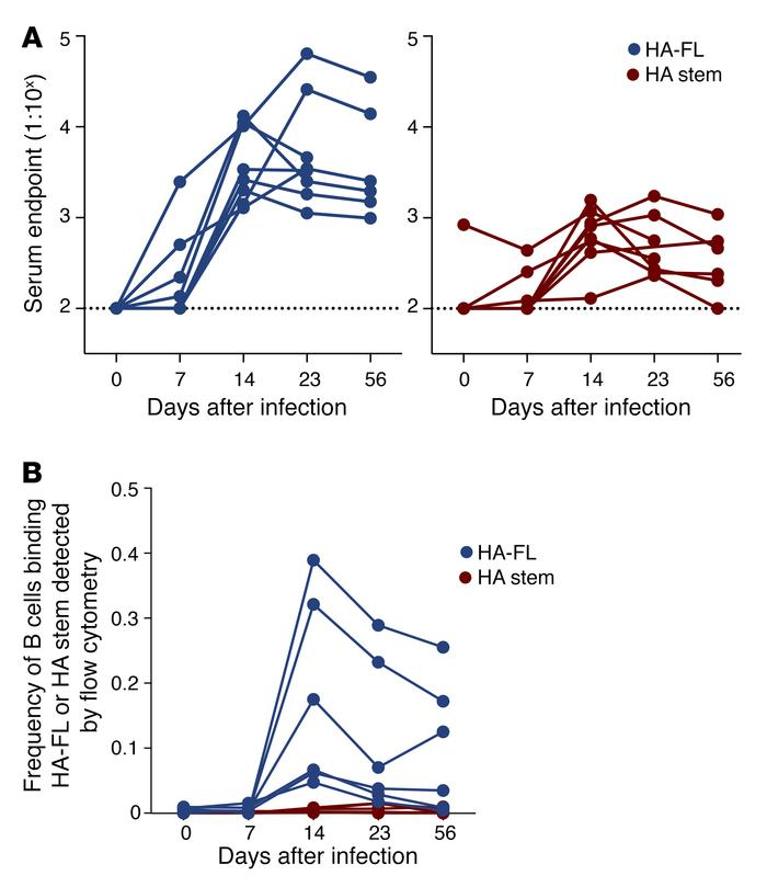 Serological and B cell responses in experimentally infected macaques. (A...