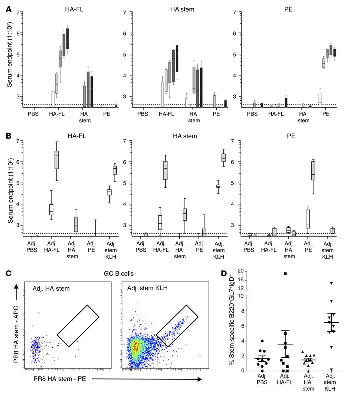 Serological and B cell responses in primary vaccinated mice. Serum endpo...