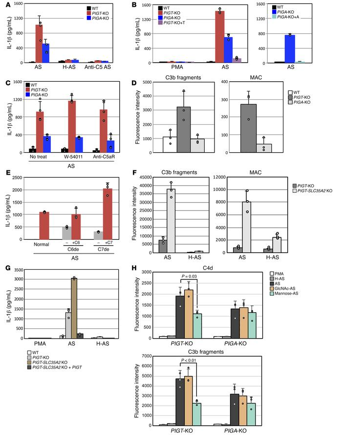 IL-1β secretion from and binding of complement components to PIGT- and P...