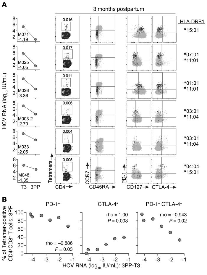 Tetramer-positive CD4+ T cell phenotypes of 6 women with postpartum vira...