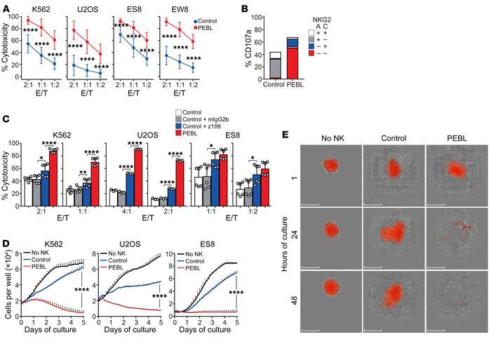 Downregulation of NKG2A increases NK cell cytotoxicity against tumor cel...