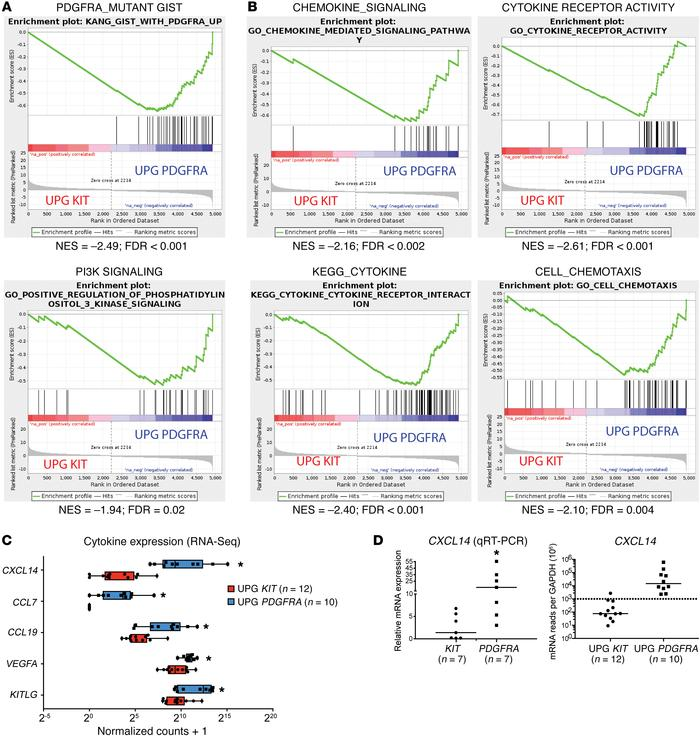 PDGFRA- and KIT-mutant GISTs have distinct signaling and cytokine signa...