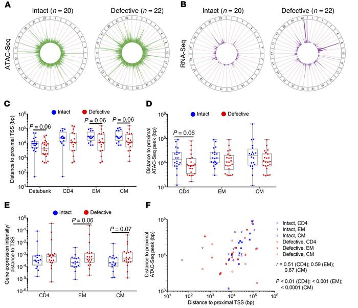 Distinct chromosomal locations of intact HIV-1 proviruses in study parti...