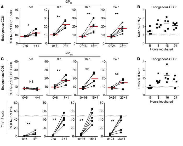 Contribution of bystander responses to IFN-γ–producing cells detected wh...