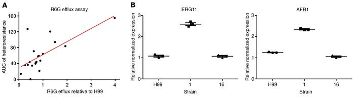 Heteroresistance is associated with increased efflux, and expression of ...