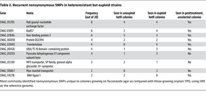 Recurrent nonsynonymous SNPs in heteroresistant but euploid strains