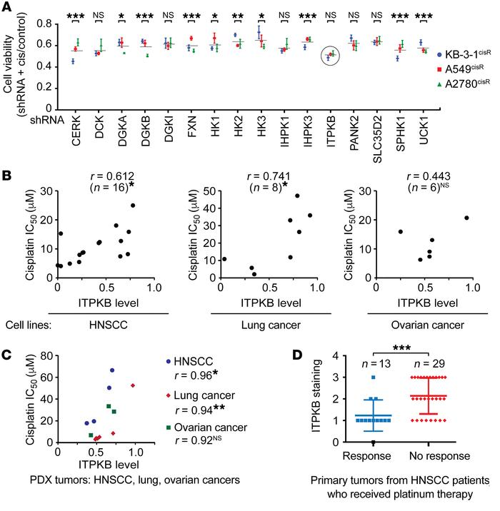 ITPKB upregulation is associated with cisplatin resistance in diverse ca...