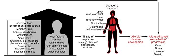 Interplay of indoor and outdoor environmental exposures and host factors...