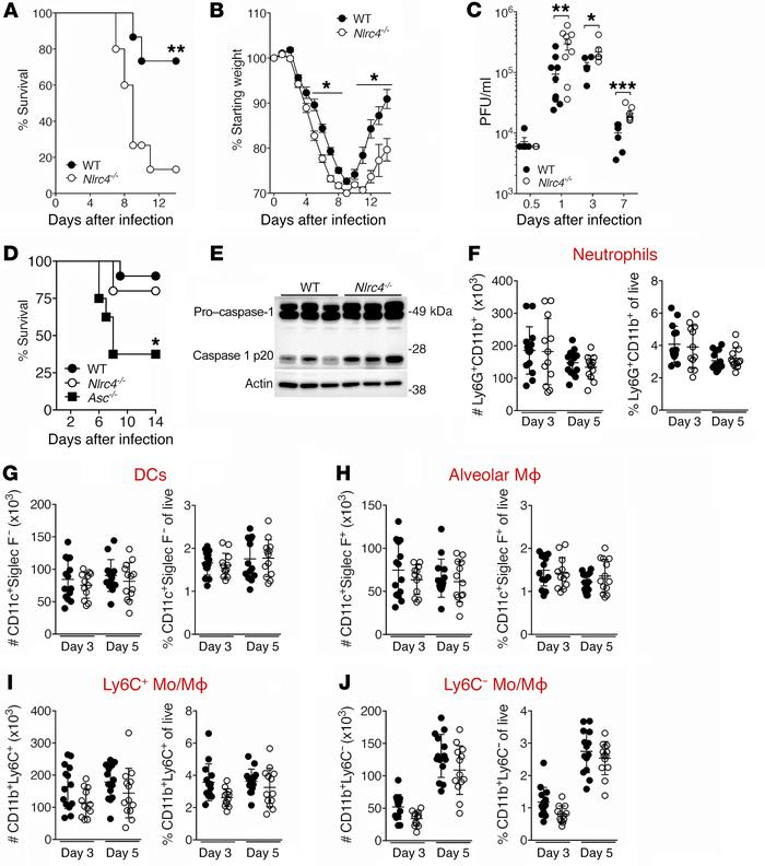 Nlrc4–/– mice have reduced survival and viral clearance during IAV infe...
