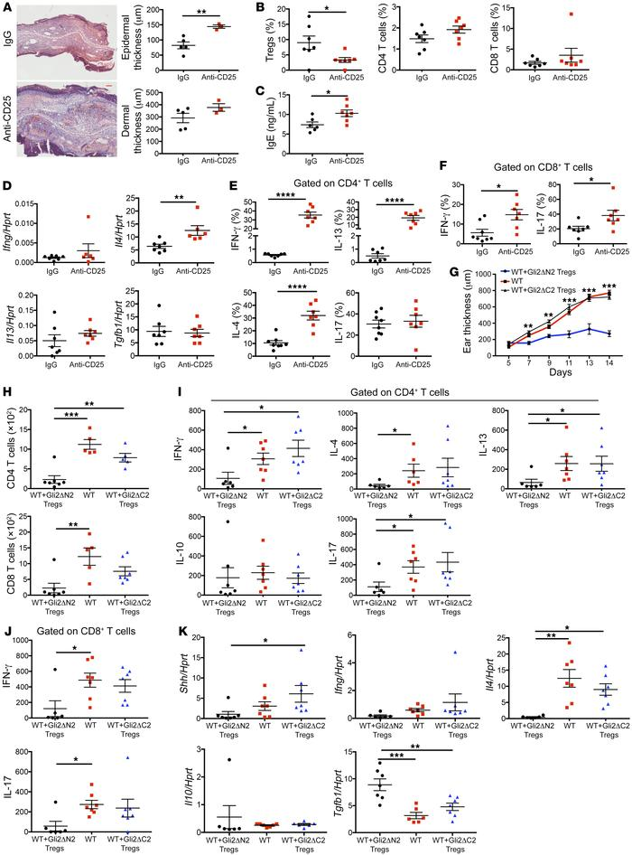 Hh signaling promotes skin Treg populations and their immune-regulatory ...