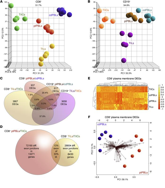 Distinct comprehensive transcriptomics from paired CD8+ and CD19+ profil...