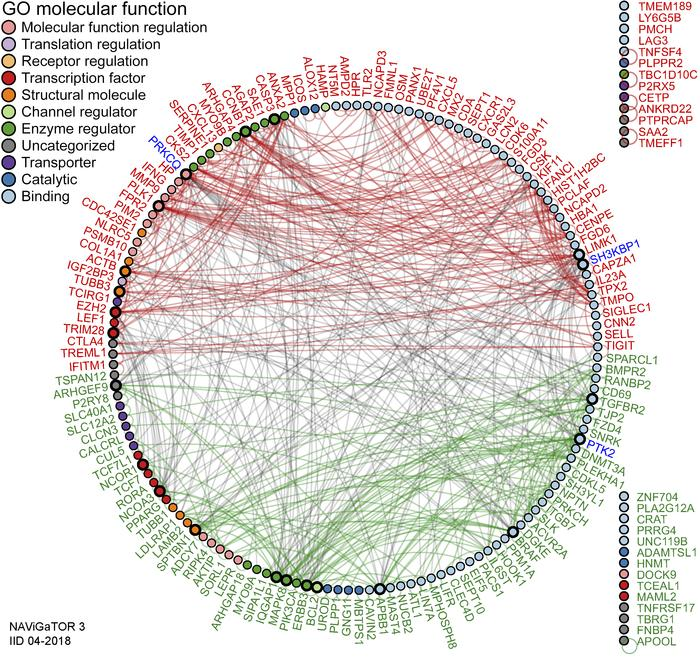 Pan-cancer DEGs have extensive PPI. PPI networks of the top 200 DEGs. A ...
