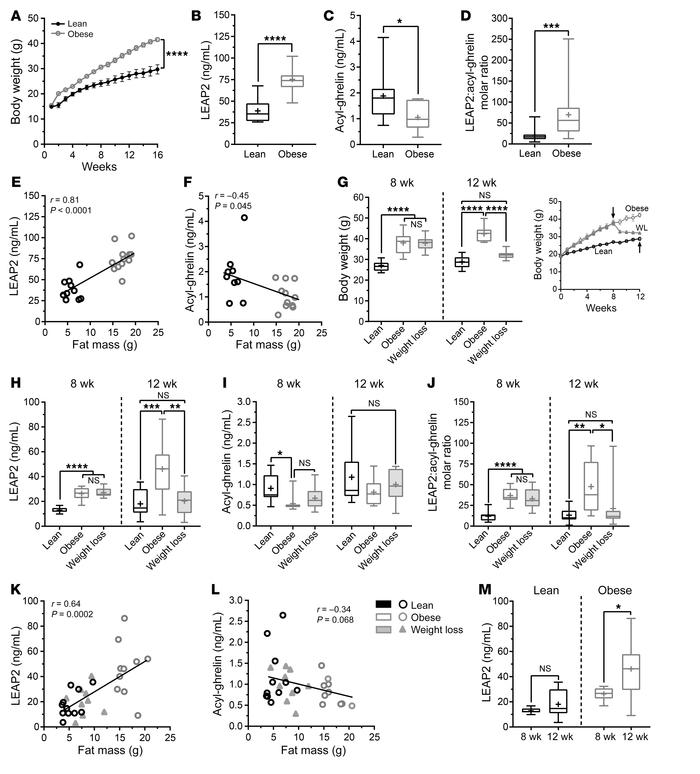 Responses to chronic HFD and weight loss in mice. Body weight curves of ...