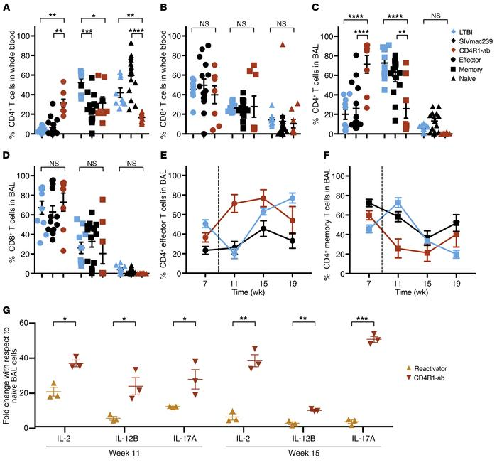 Peripheral and BAL CD4+ T cells reflect a proportional shift toward effe...