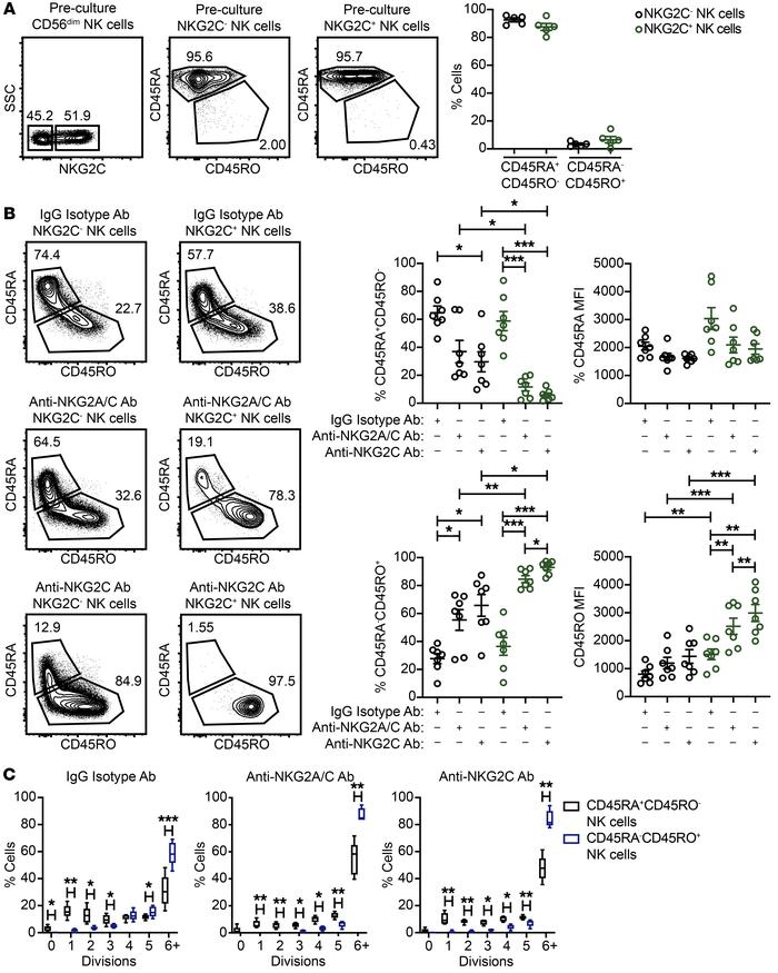 Chronic stimulation of adaptive NK cells through NKG2C leads to a CD45 i...