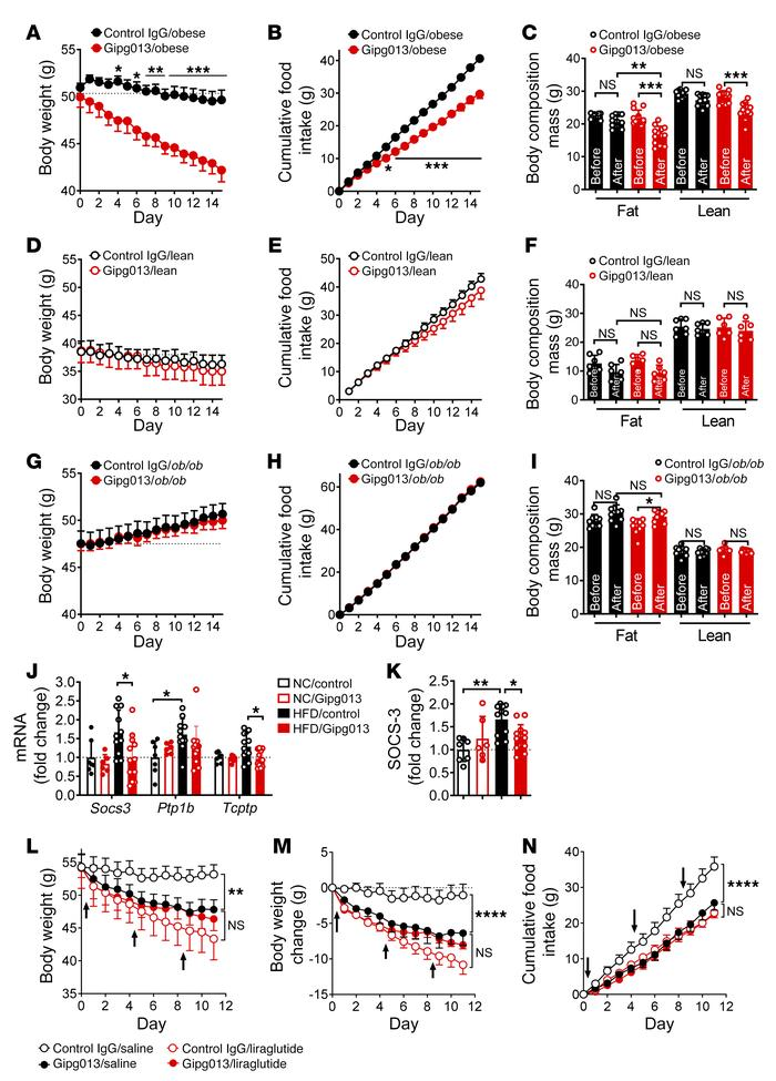 Brain GIPR controls body weight and adiposity in obese mice. The GIPR mo...