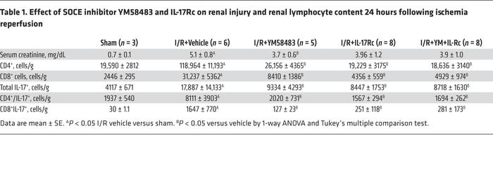 Effect of SOCE inhibitor YM58483 and IL-17Rc on renal injury and renal l...