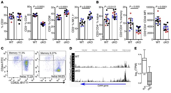 A shift toward a naive phenotype in CD3+CD4+ T cells from Kdm6a cKO as c...