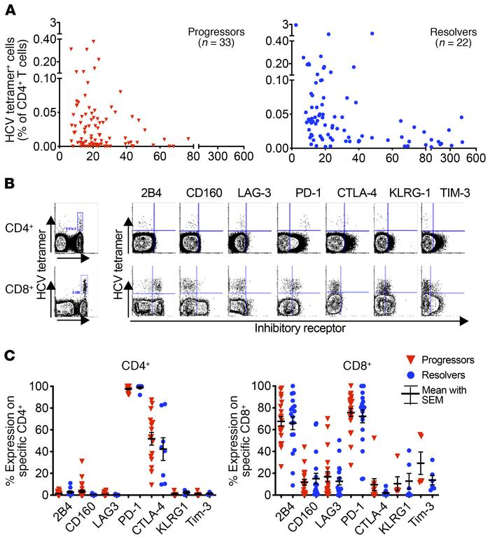 Frequencies of HCV-specific CD4+ T cells over time and inhibitory recept...