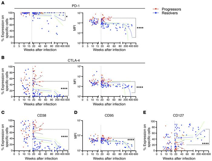 HCV-specific CD4+ T cells diverge in phenotypes once viral loads diverge...