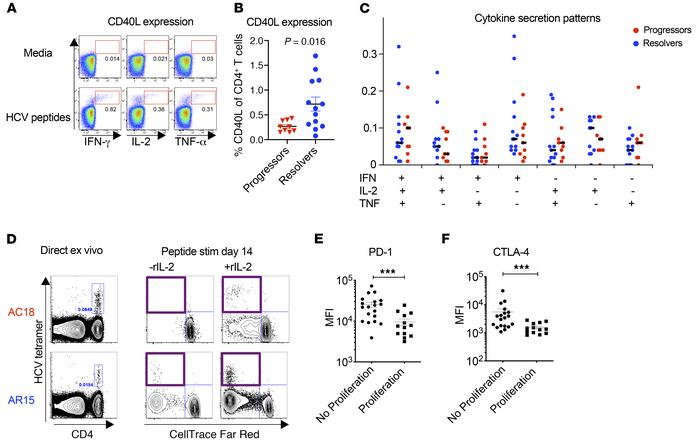 Functional analysis of HCV-specific CD4+ T cells. (A) Representative flo...