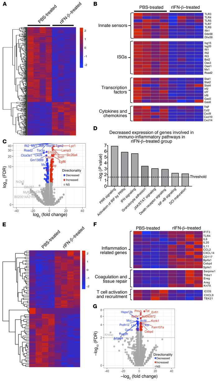 RNA-Seq analyses of gene expression profile in MERS-CoV-MA–infected lung...