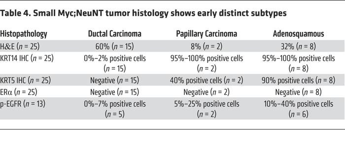 Small Myc;NeuNT tumor histology shows early distinct subtypes