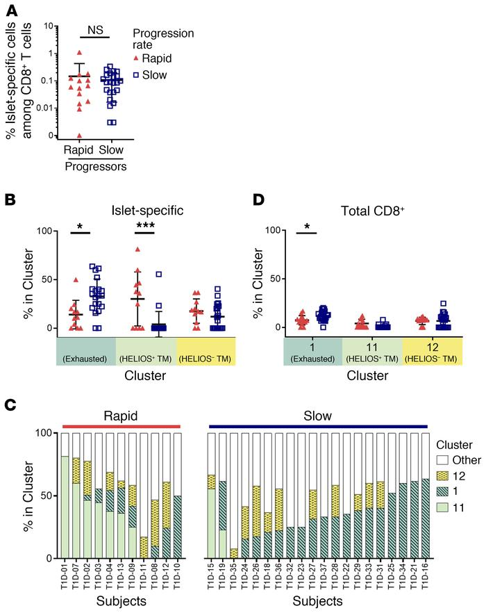 Phenotype, not frequency, of islet-specific CD8+ T cells is associated w...