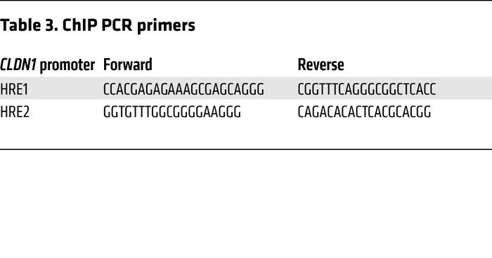 ChIP PCR primers