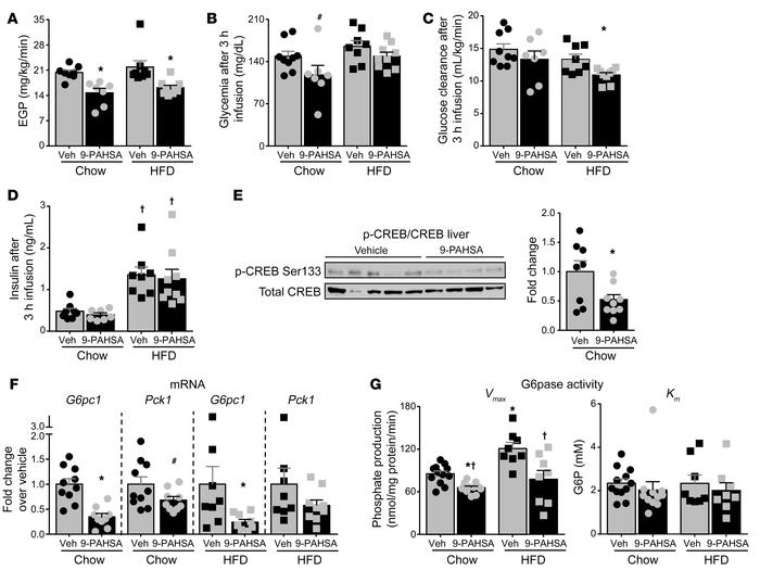 Acute PAHSA treatment decreases glucose production in vivo through inhib...