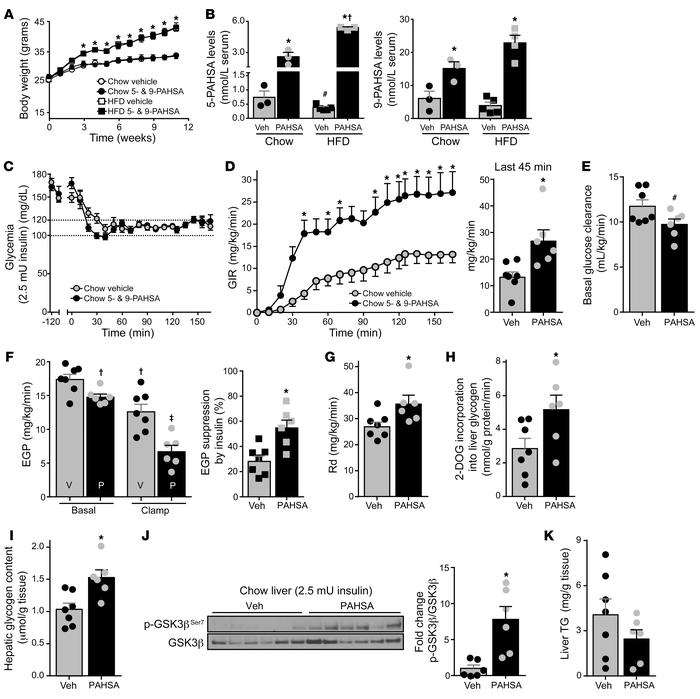 Chronic PAHSA treatment increases systemic insulin sensitivity in chow-f...