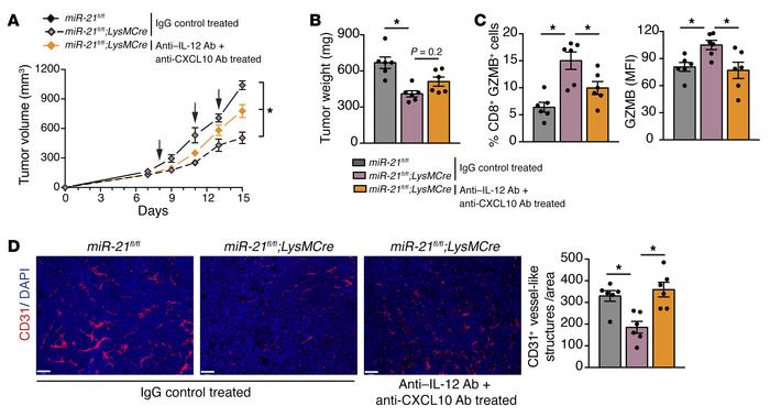 Neutralization of IL-12 and CXCL10 decreases tumor growth, improved CTL ...