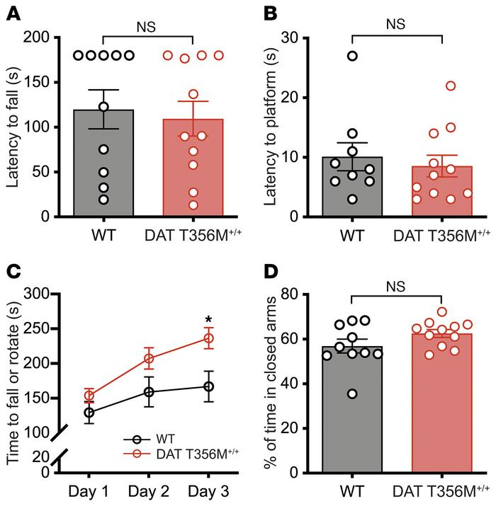 DAT T356M+/+ mice do not demonstrate deficits in strength, coordination,...