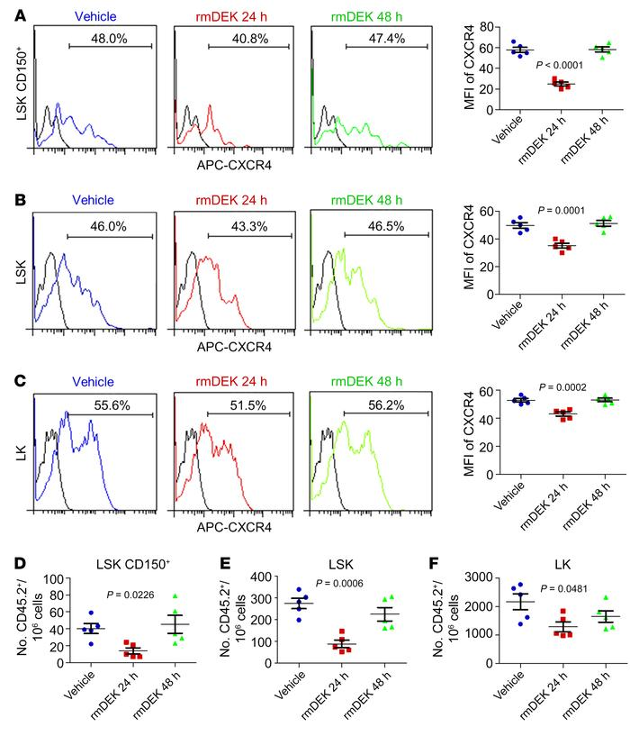 In vivo rmDEK treatment reversibly decreases CXCR4 expression and homing...