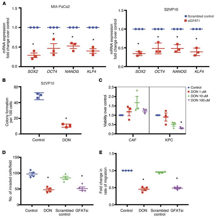 GFAT1 regulates self-renewal and invasion in PDAC. GFAT1 inhibition by s...