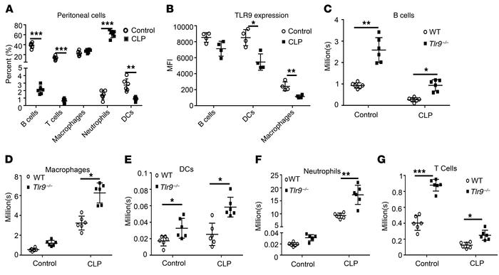 TLR9 controls peritoneal immunity at baseline and during sepsis. WT and ...