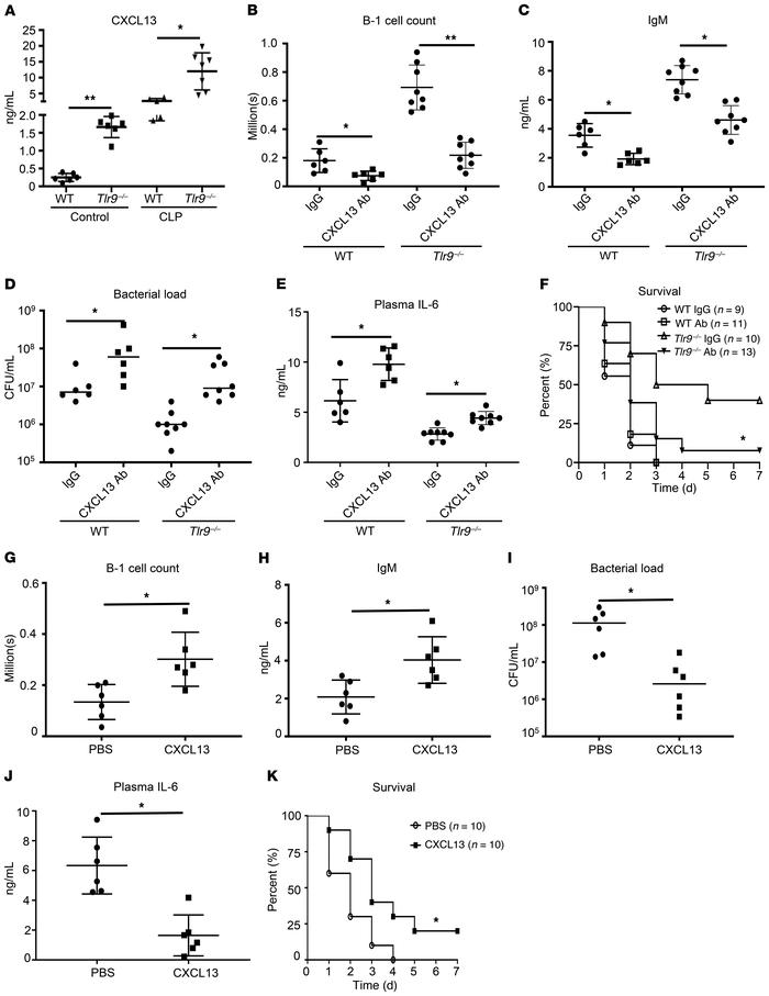 TLR9 inhibits peritoneal B cell recruitment via suppressing CXCL13 produ...