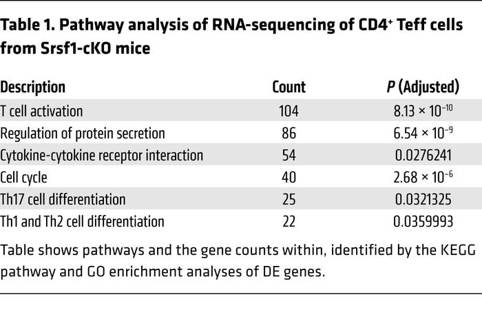 Pathway analysis of RNA-sequencing of CD4+ Teff cells from Srsf1-cKO mice