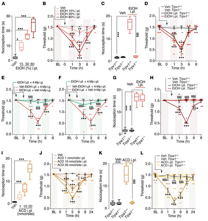 TRPV1 mediates acute nociception and TRPA1 mediates allodynia evoked by ...