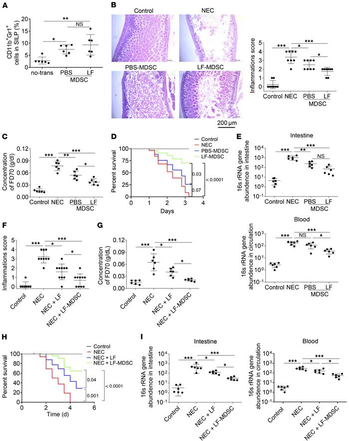 Therapeutic effect of LF-MDSCs in the model of NEC. (A–E) NEC was induce...