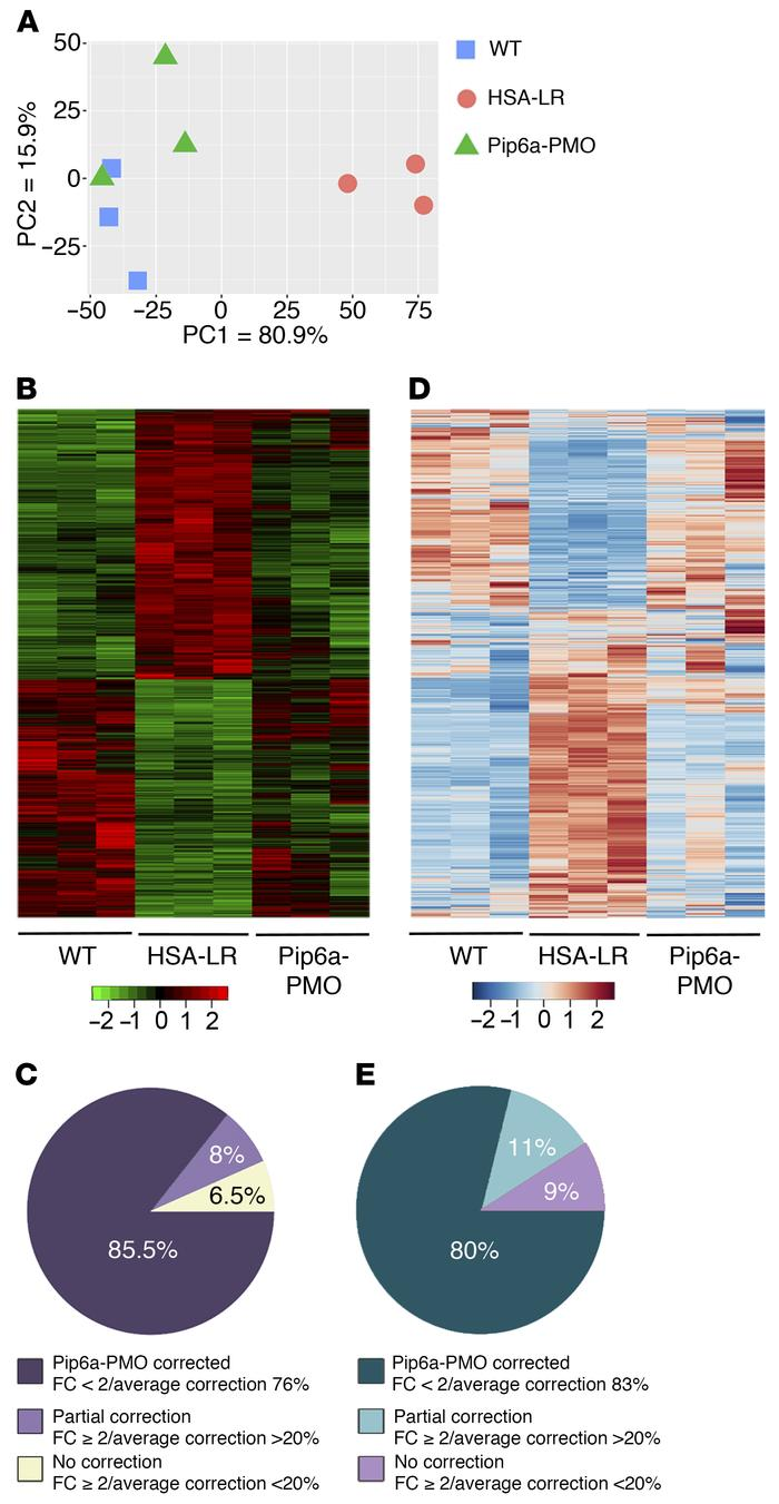 Treatment with Pip6a-PMO normalizes global transcriptome at both express...