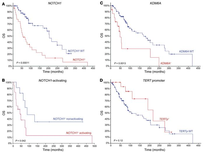 OS comparison for R/M ACC by individual gene. (A) NOTCH1 mutant vs. NOTC...