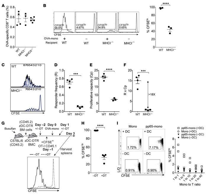 Monocytes induce CTL responses by transferring Ag to cDCs. (A) Frequency...