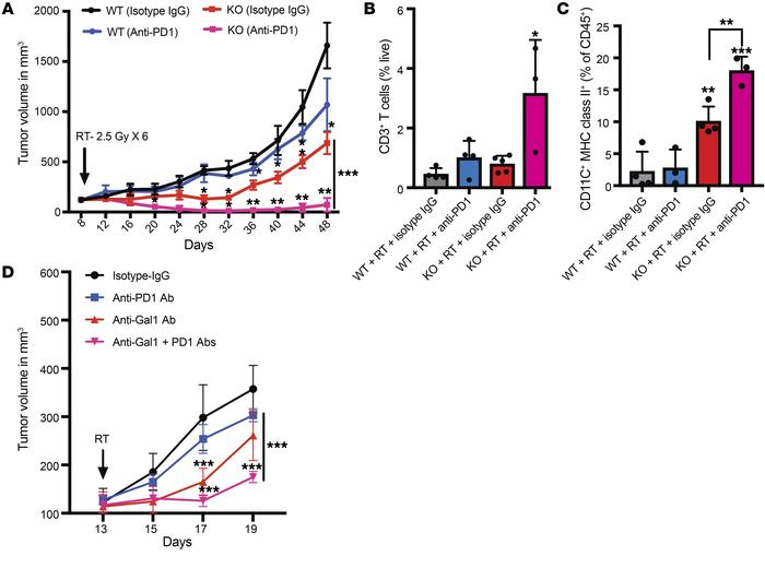 Combining Gal1 blockade with RT significantly improves the response to i...