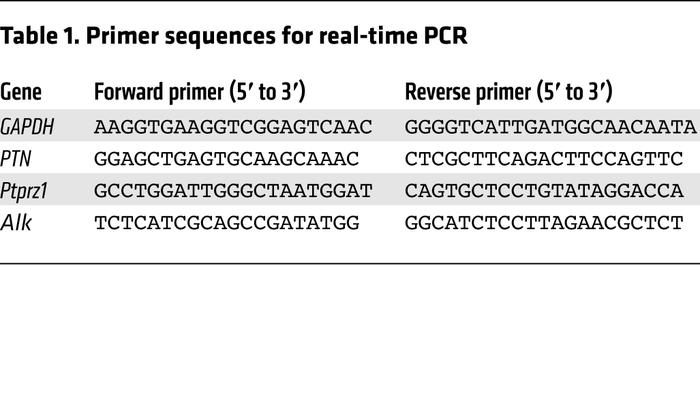 Primer sequences for real-time PCR